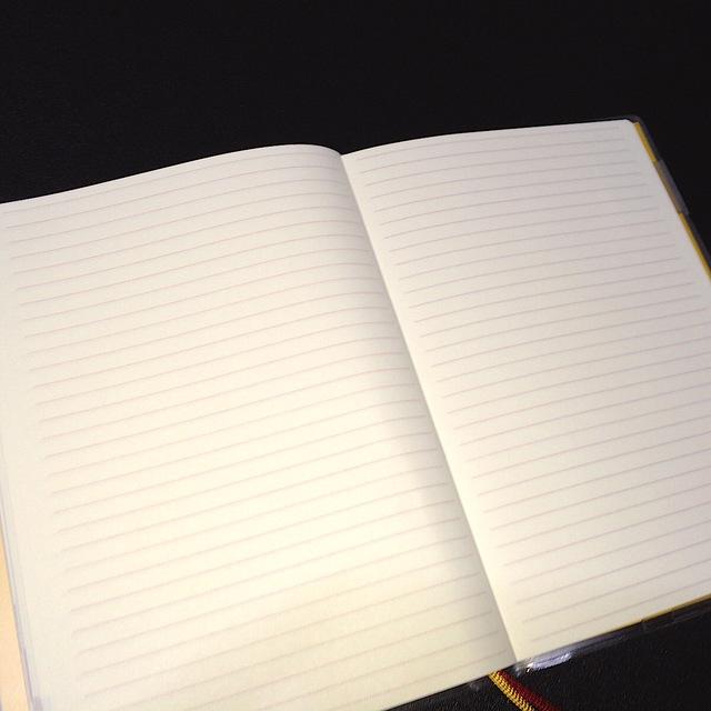 なんでも好きに書き込めるブランクページはたっぷり用意されている